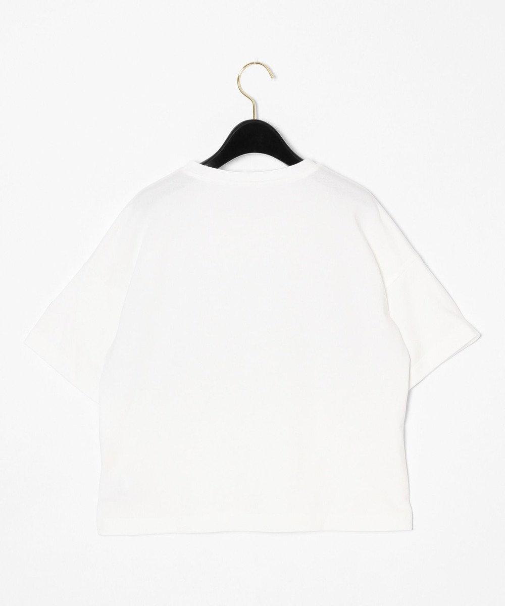 GRACE CONTINENTAL リバーレースTシャツ ホワイト