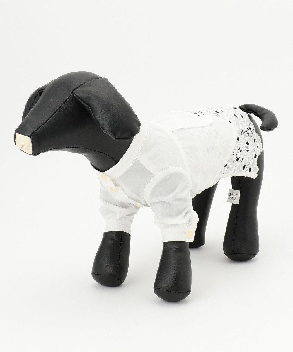 GRACE CONTINENTAL DOGWEAR-トップ1 ホワイト